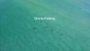 Drone Fishing for Tuna