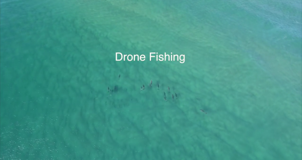 drone-fishing-for-tuna