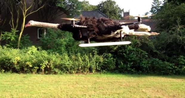 flying-ostrich-drone