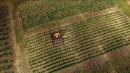 UPS Delivery via Drone